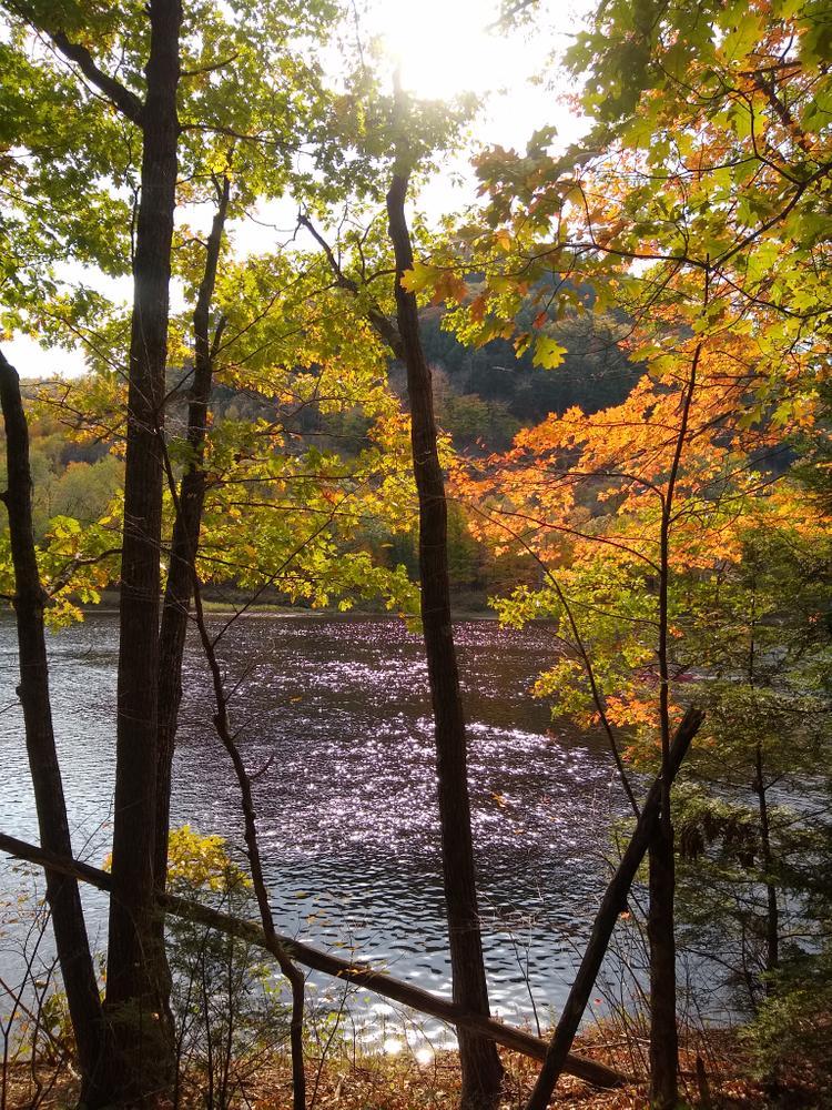 Androscoggin river (Credit: NikkiV)