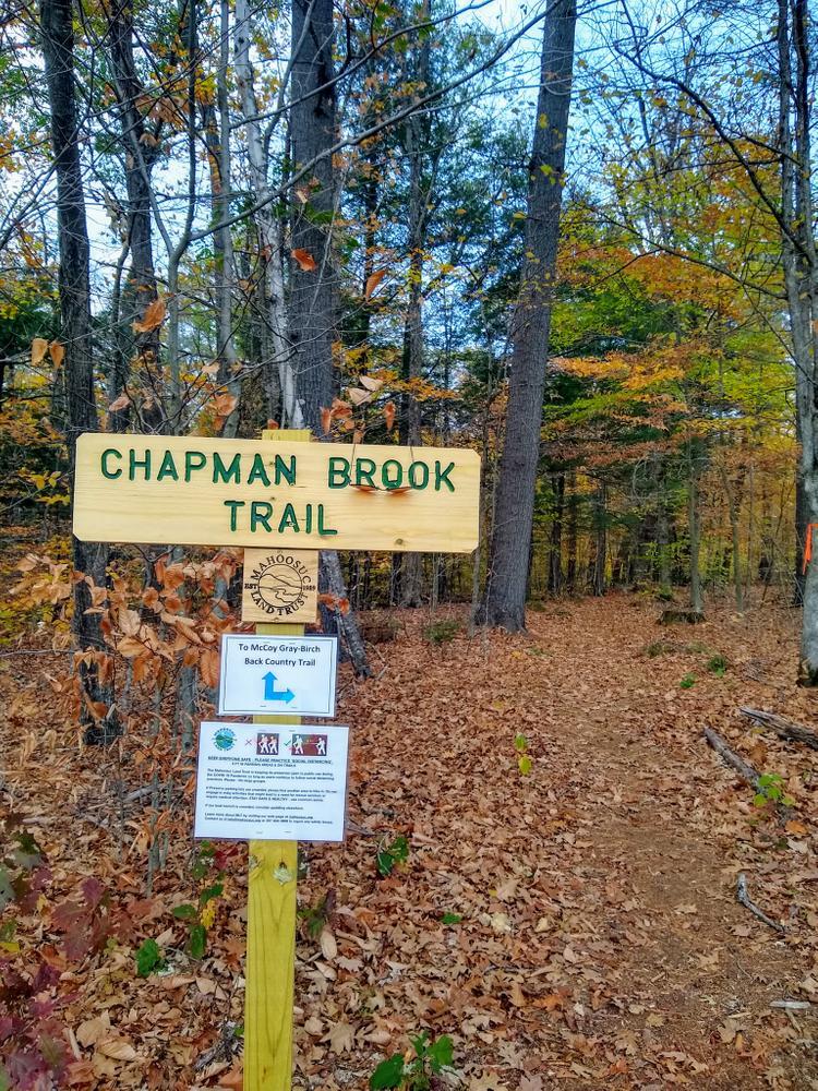 McCoy-Chapman Forest
