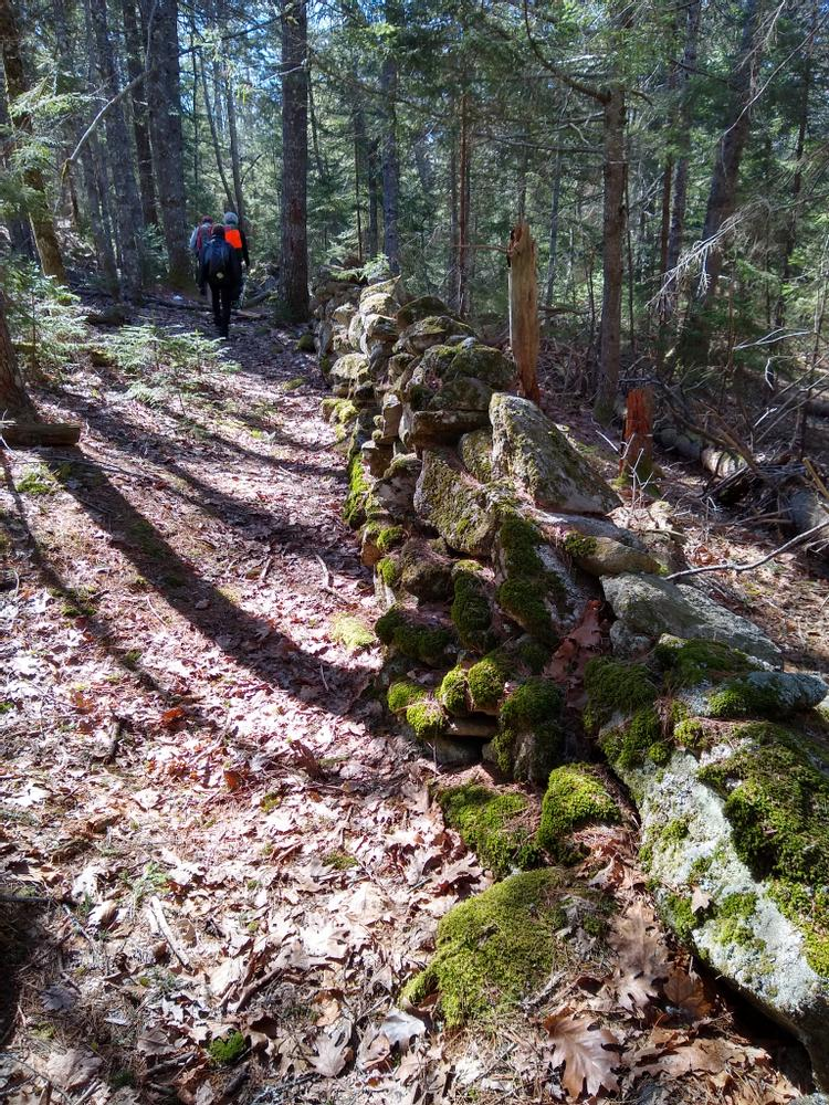 Trail along the stone wall (Credit: Michelle Moody)