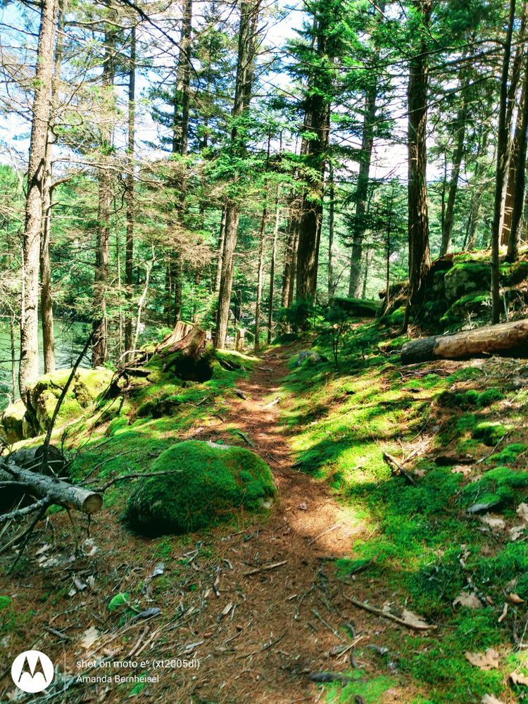 On the geology trail (Credit: Amanda Bernheisel)