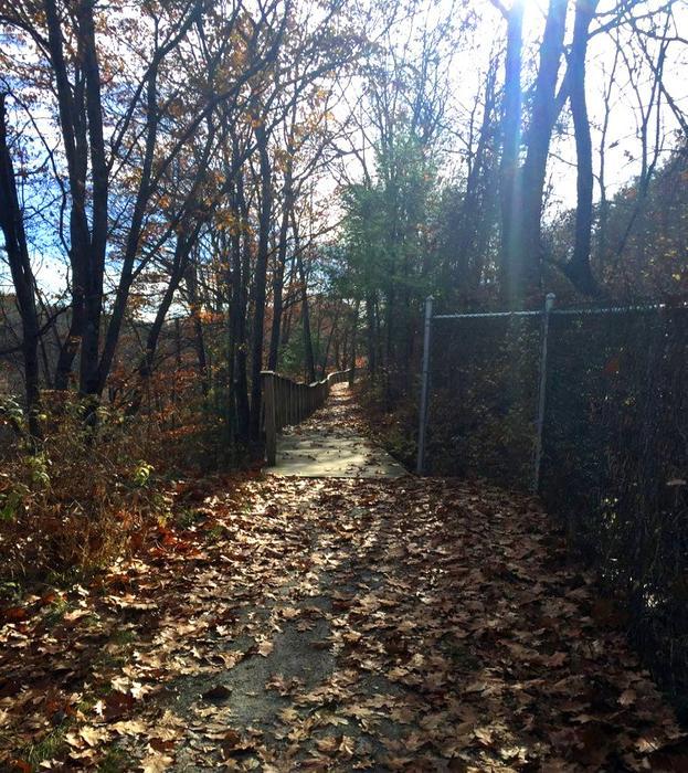 Fall Walk 11/10/2016 (Credit: David Schmader)