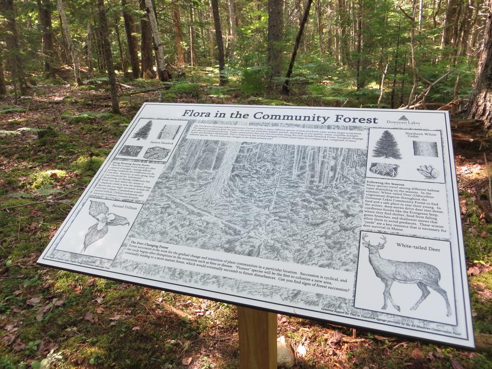 Interpretive panel along the trail (Credit: DLLT)