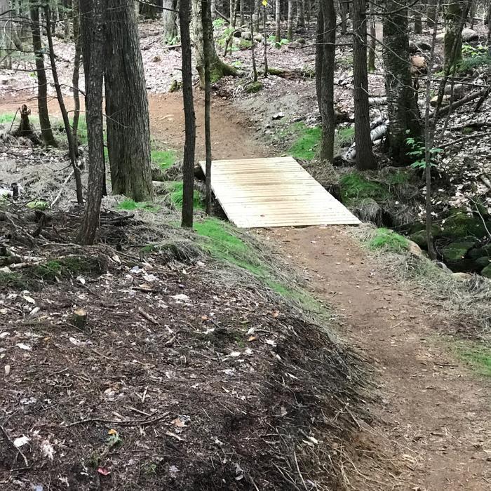 Bethel Village Trails: Summer Trails