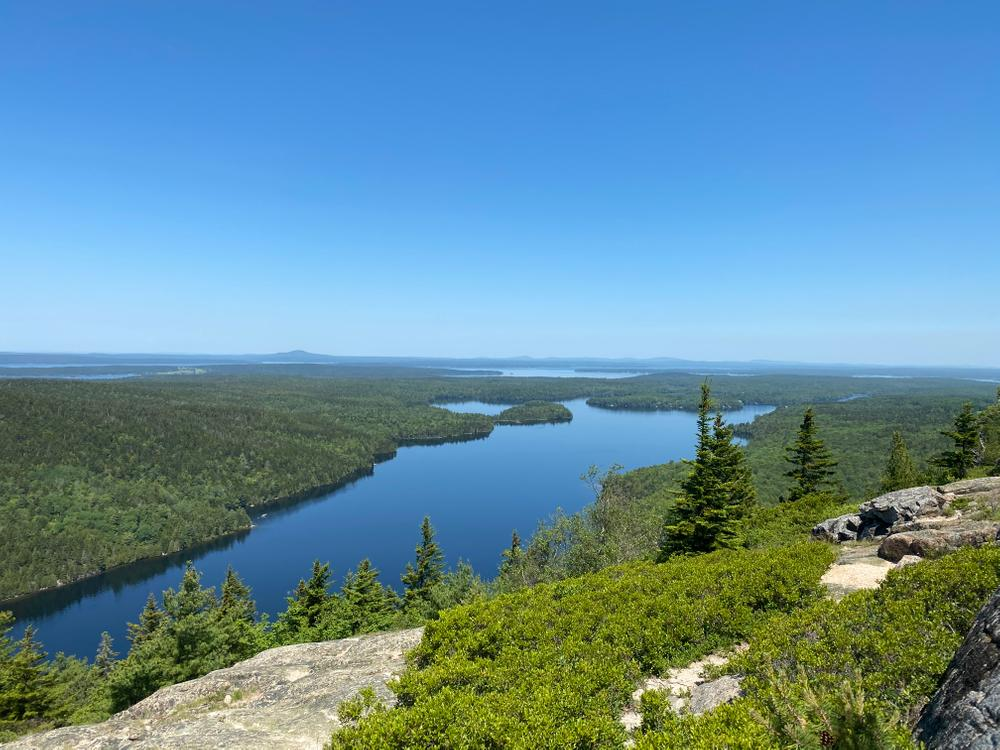 Overlooking Long Pond, MDI (Credit: Becca Stanley)