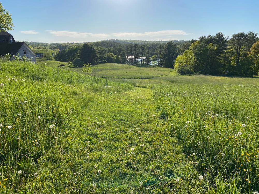 Round Top Farm trail (Credit: Coastal Rivers)