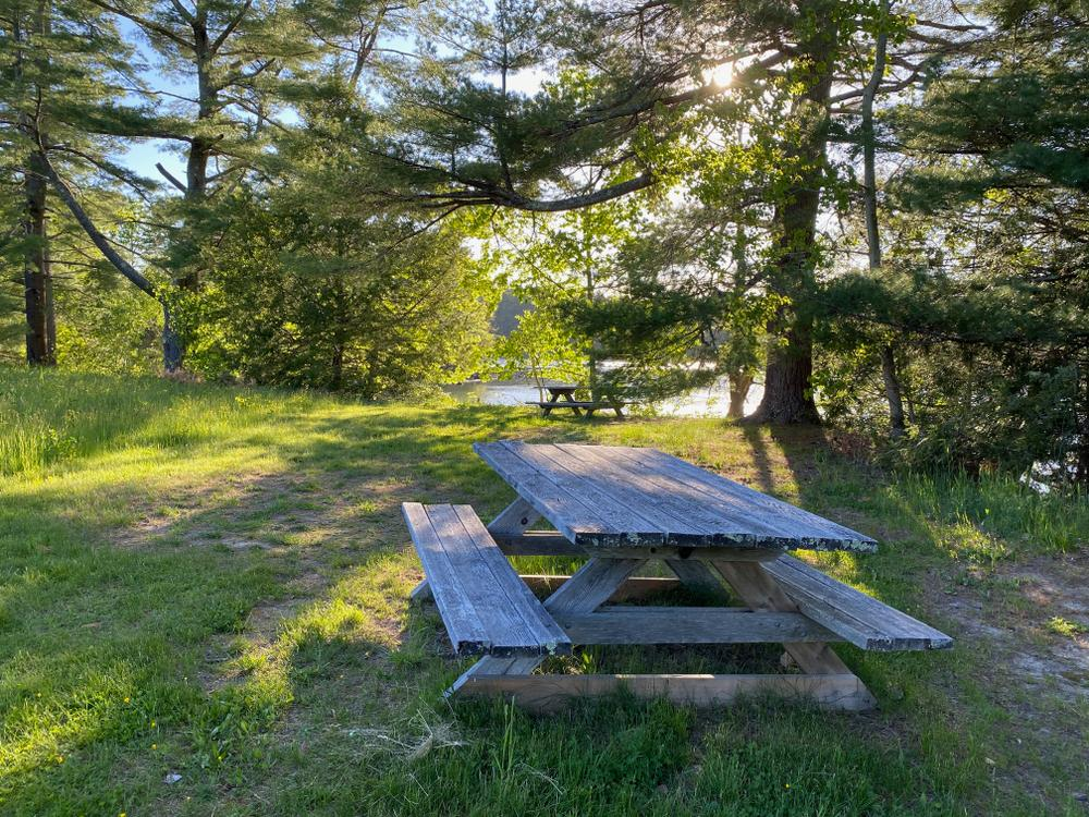 picnic tables on the river at Round Top Farm (Credit: Coastal Rivers)