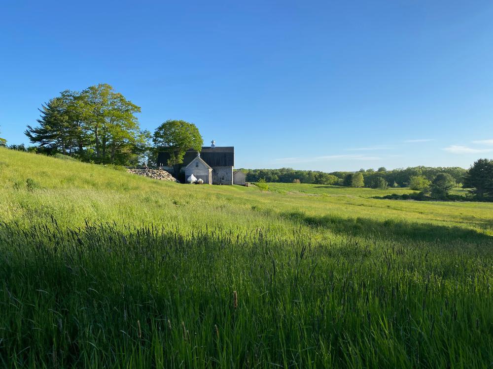 Darrows Barn and hayfields (Credit: Coastal Rivers)