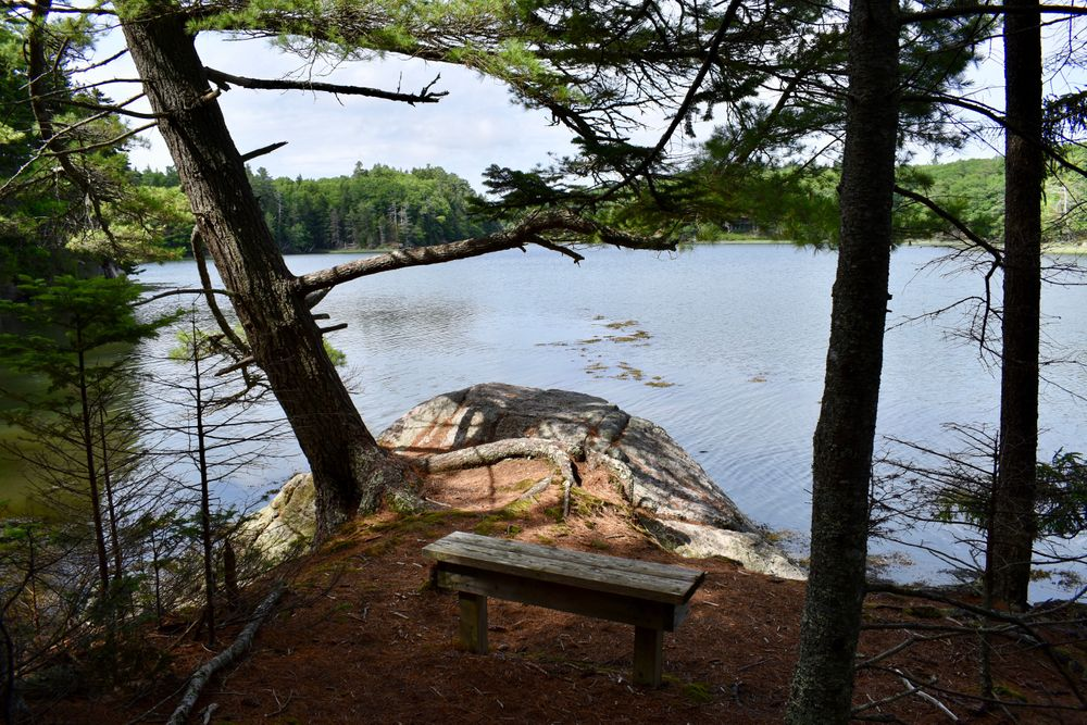 Bench overlooking a beautiful cove (Credit: Beth Whitney)
