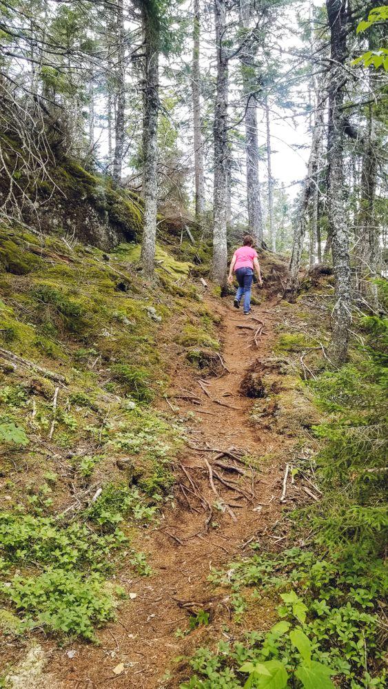 Eagle Rock Trail