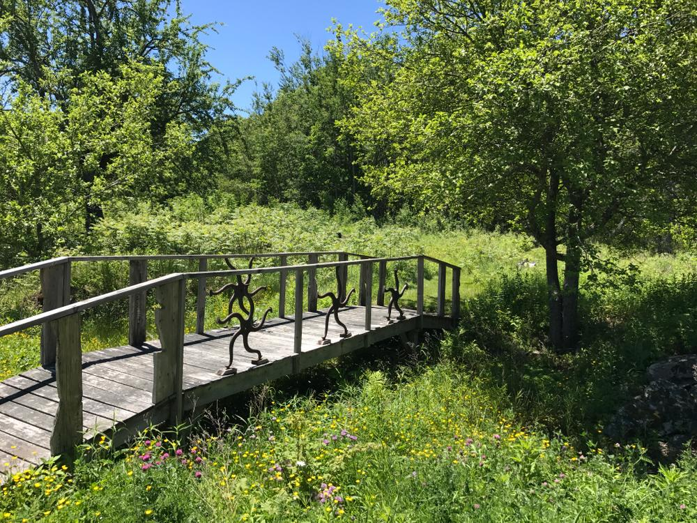 Bridge to Sculpture Path (Credit: Georges River Land Trust)