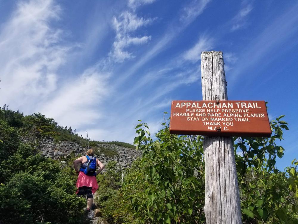 Mount Abraham - Fire Warden Trail