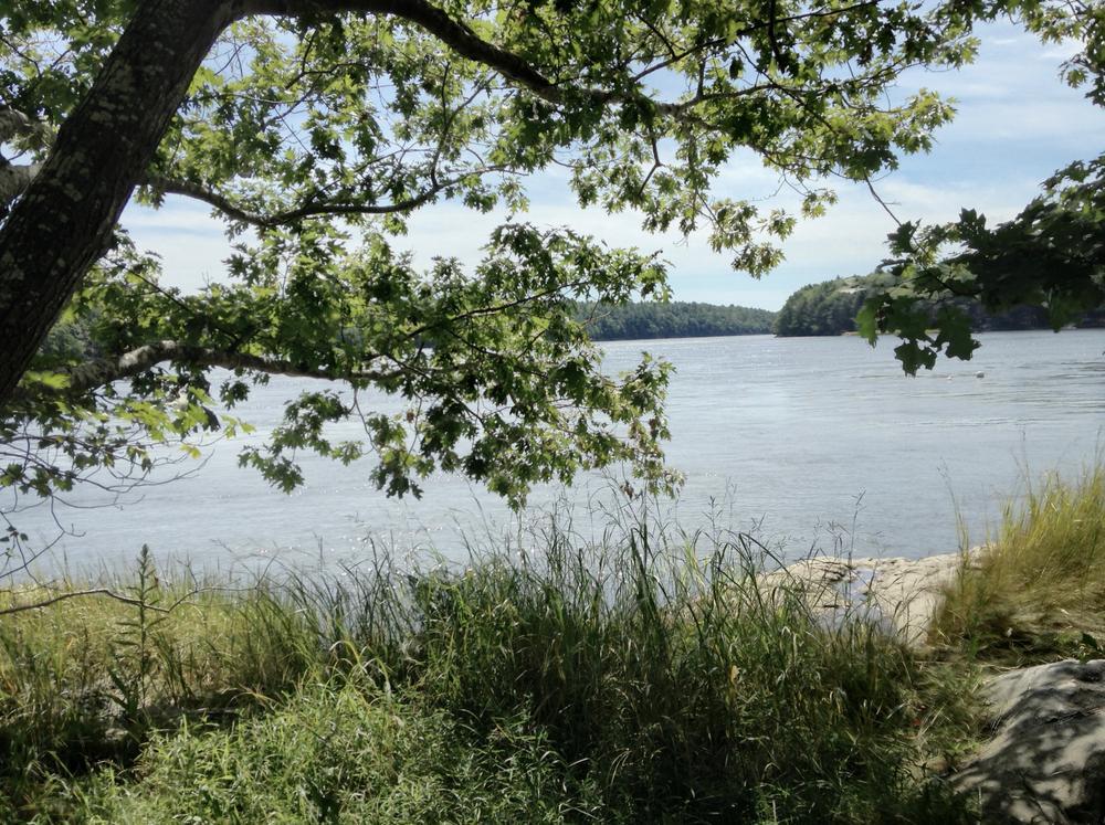 Down River (Credit: JAF)