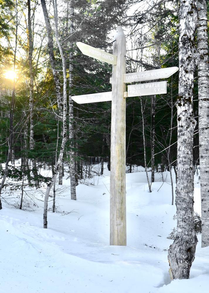Trail Junction (Credit: Hope Rowan)