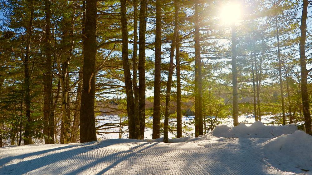 Riverside Trail (Credit: Hope Rowan)