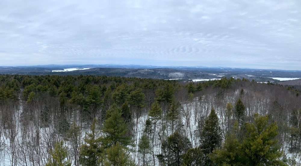View from the Fire Tower (Credit: Paula Bourque)