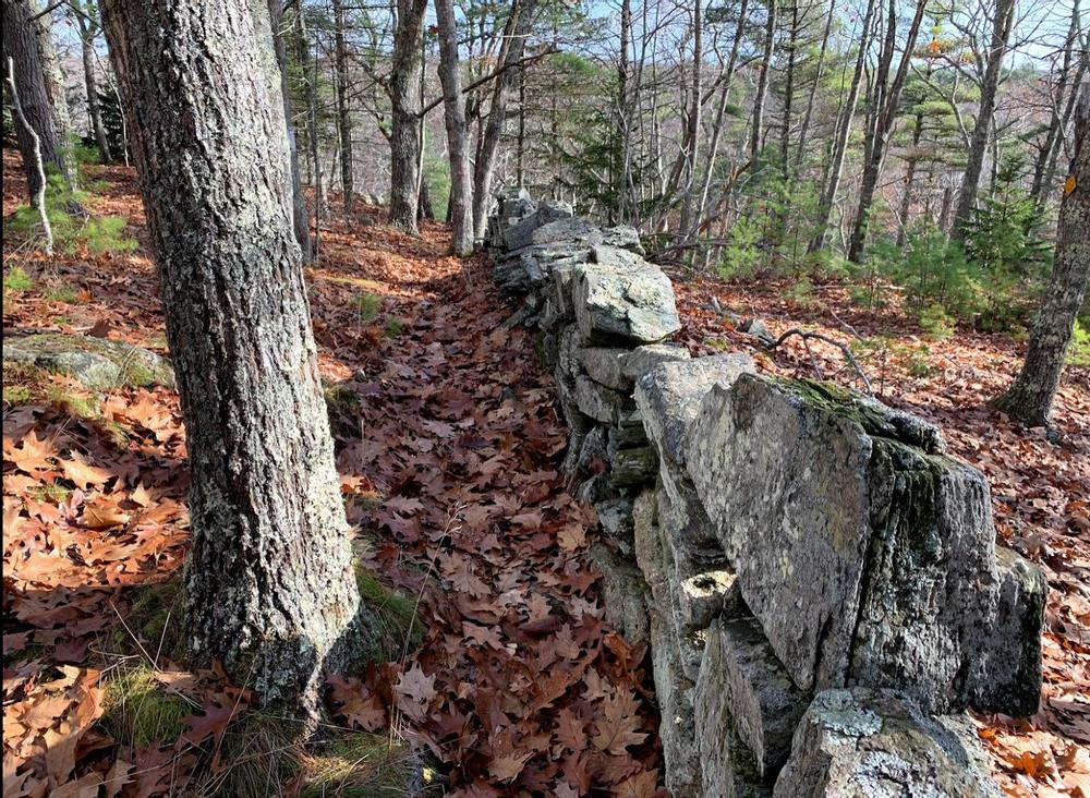 Rock Wall (Credit: Paula Bourque)