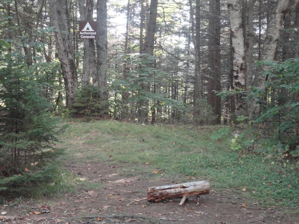 Authorized campsite with privy (Credit: Remington34)