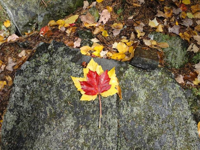 Autumn Borestone ascent (Credit: Remington34)
