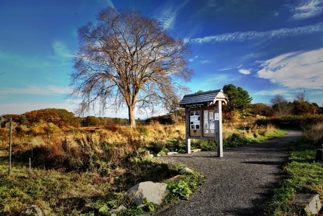 Pleasant Hill Preserve