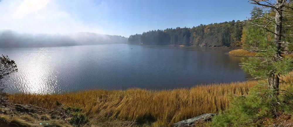 mist burning off the Sasanoa River in the morning 10/21/19 (Credit: Michael Hanson)