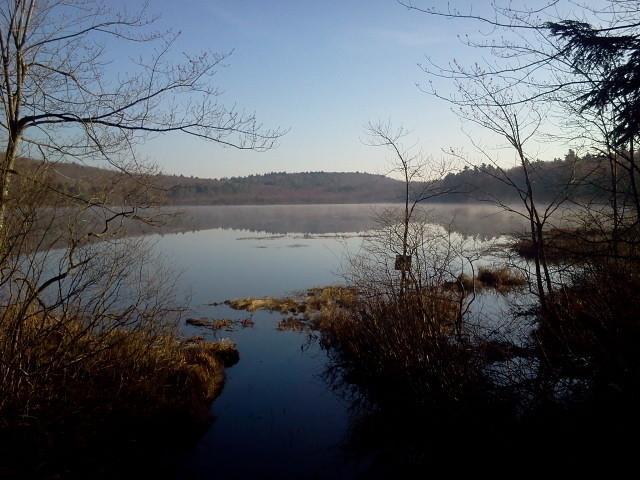 Shedd Pond (Credit: Eben Sypitkowski)
