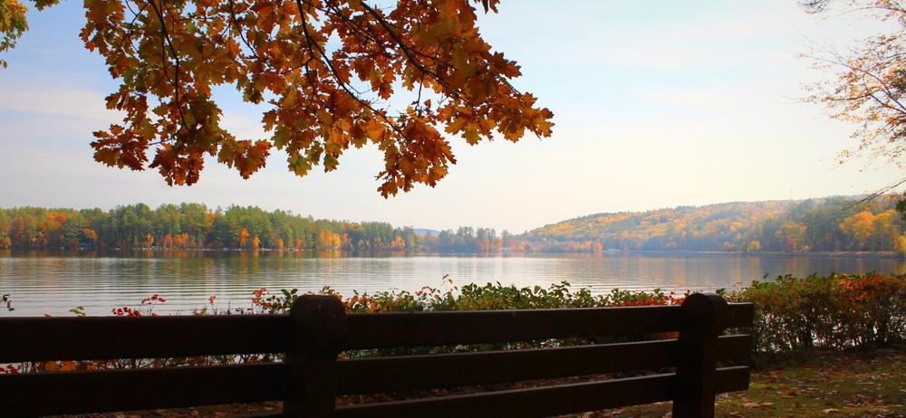 Fall morning on the lake (Credit: gary janson)