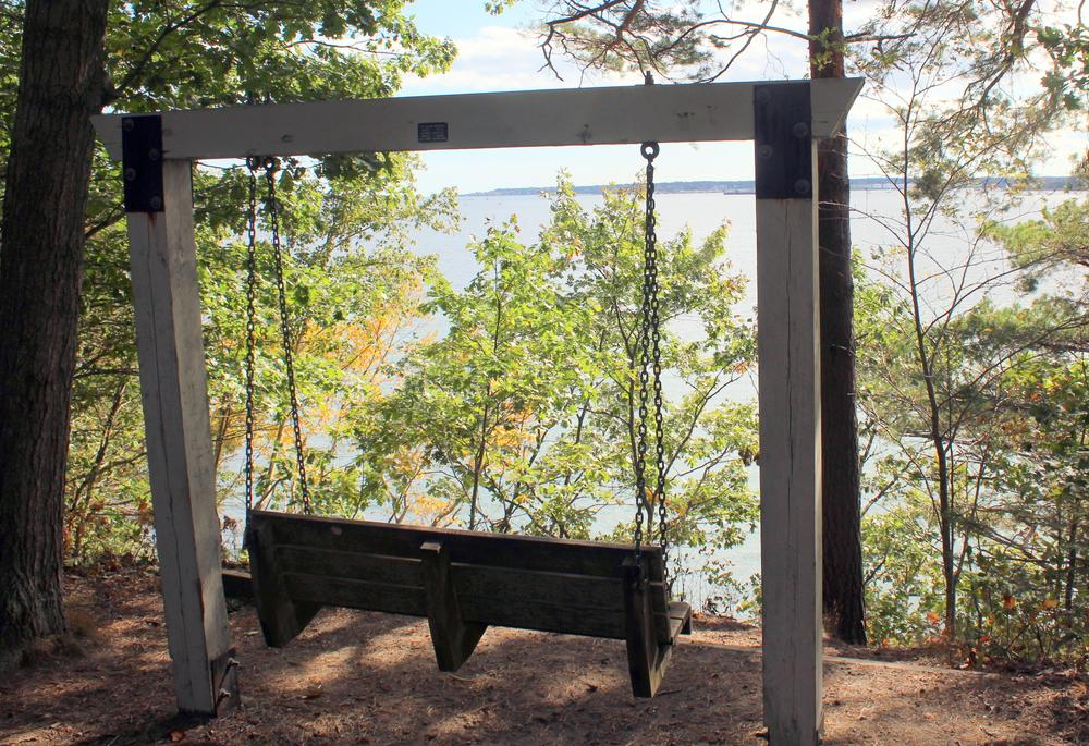trail view (Credit: gary janson)