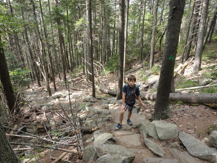 """""""We're going where?!"""" - Youngster realizing the meaning of """"steep ascent"""" (Credit: Remington34)"""