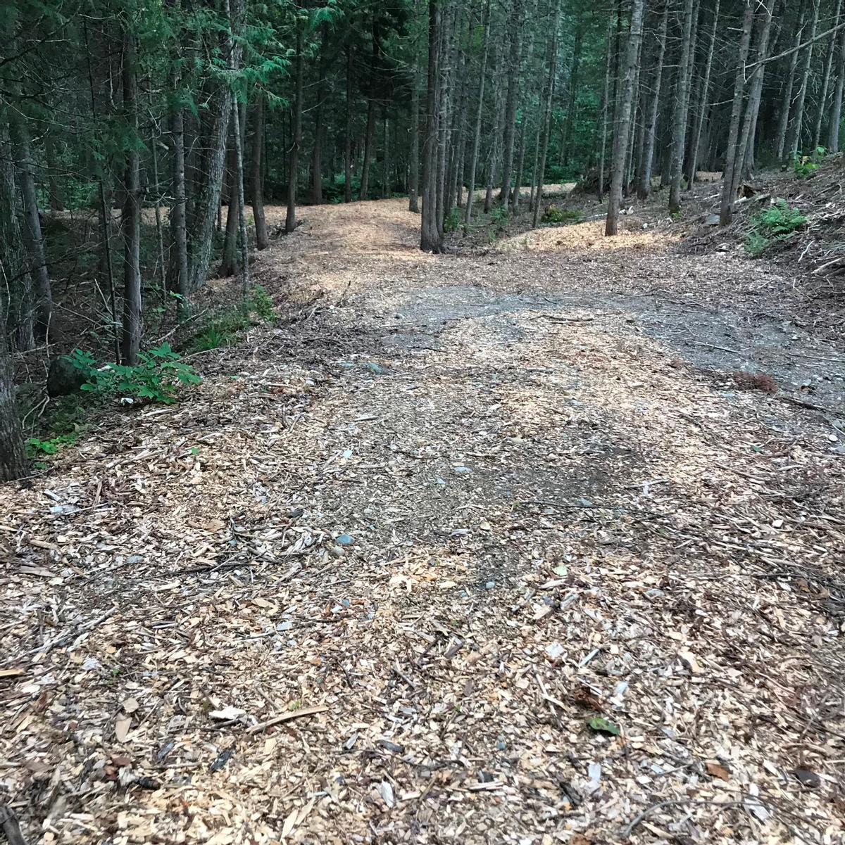 A mix of woodchips and stones make up the surface of the trail
