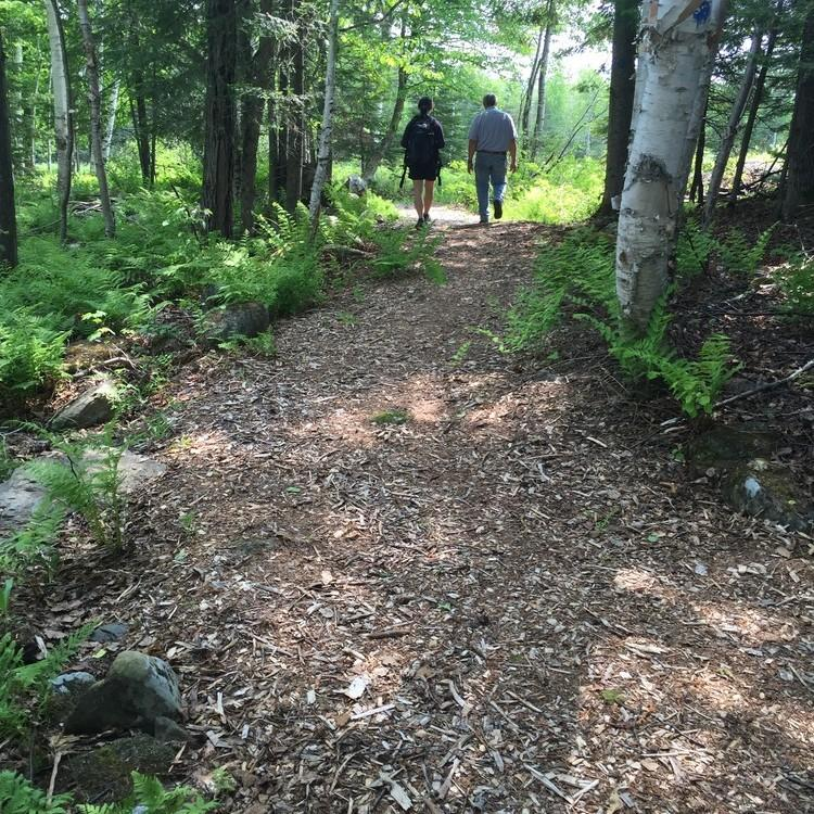 Two people walk on a trail of woodchips
