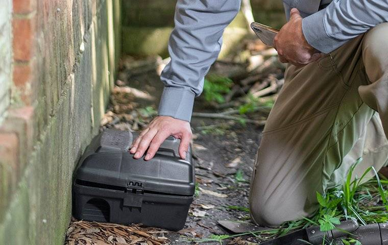 a technician checking a rodent station outside of a brick building