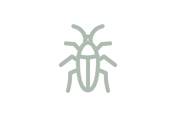 electronic icon of a cockroach