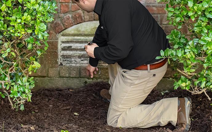 pest control technician inspecting exterior in idaho falls