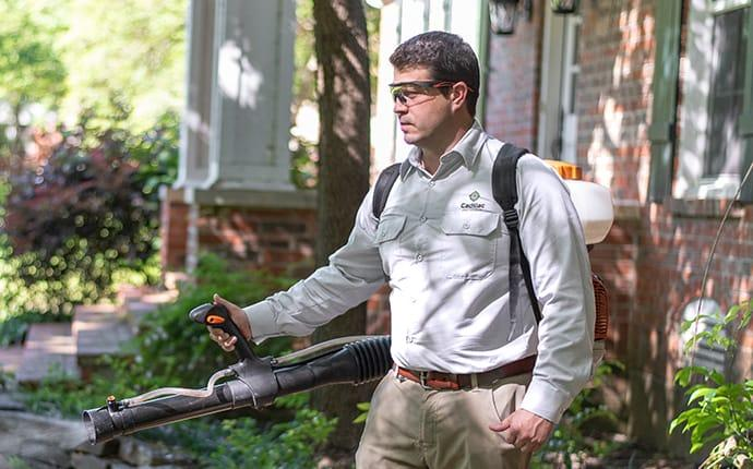 pest control technician treating a yard for mosquitoes in cadillac maine