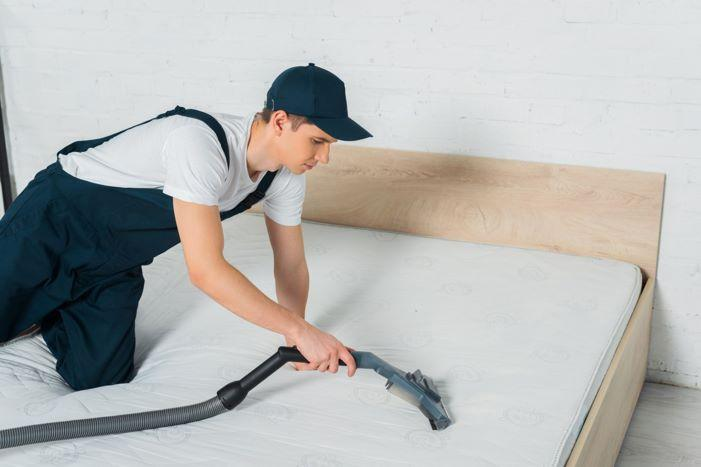 bed bug removal mattress