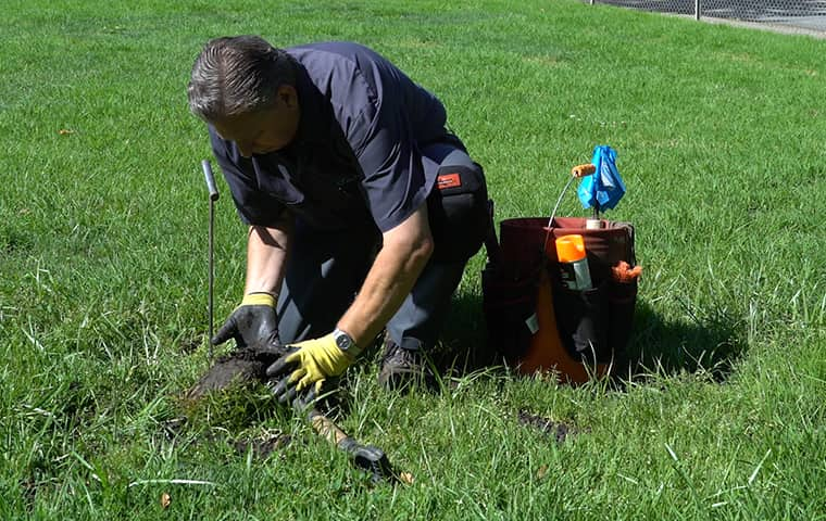 a smiths pest management service technician treating a home in los gatos california