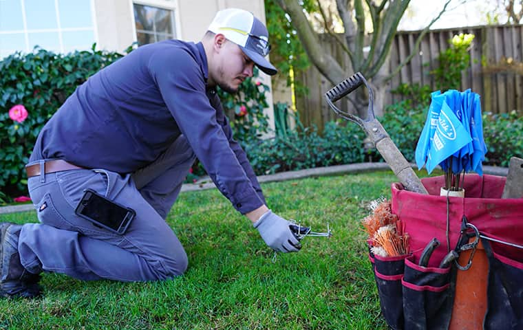 a smiths pest management service technician inspecting a yard in hillsborough california for gopher damage