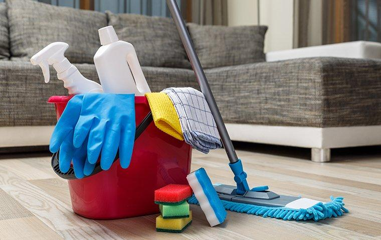a bucket of spring pest preventing cleaning supplies