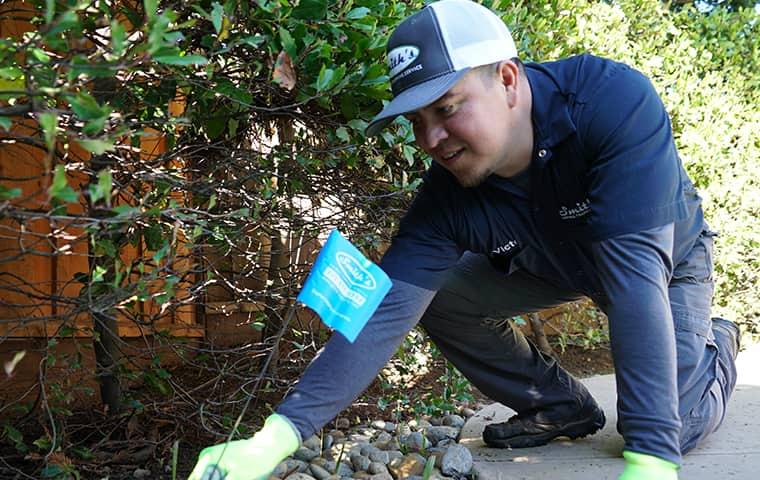 smith's pest management technician servicing a san francisco california bay area home