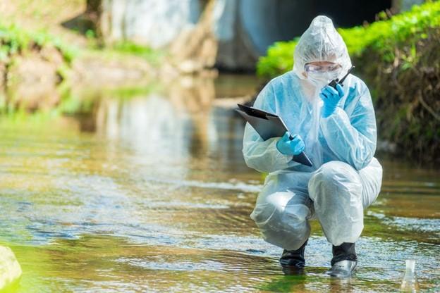 bubonic plague inspection california
