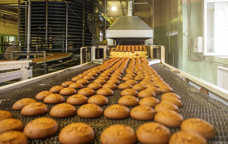 cookies on a conveyor belt