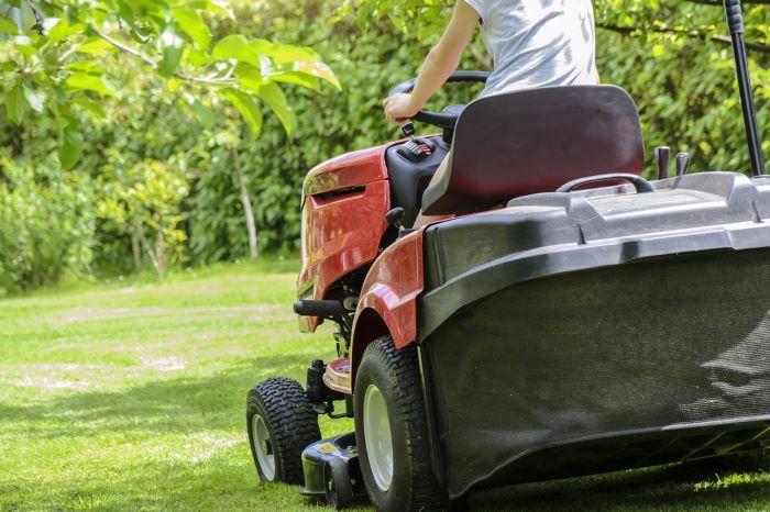 diy organic lawn care methods