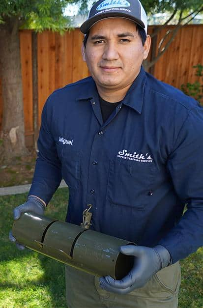 ground squirrel control technician serving the san francisco bay area