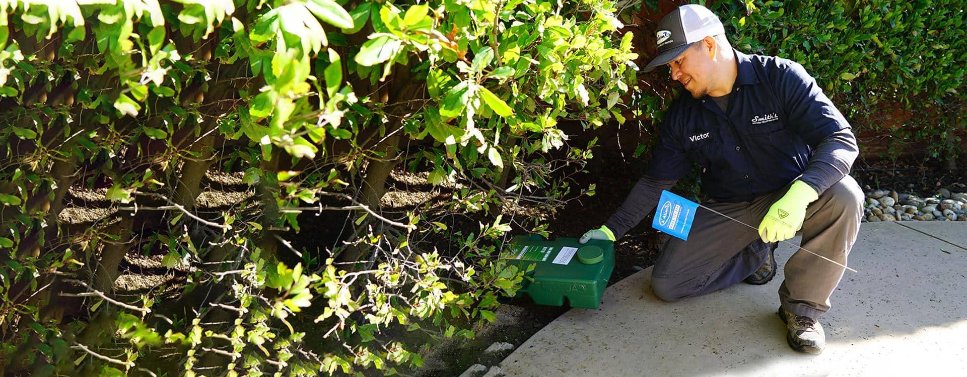monterey ca wildlife control specialist eliminating ground squirrels