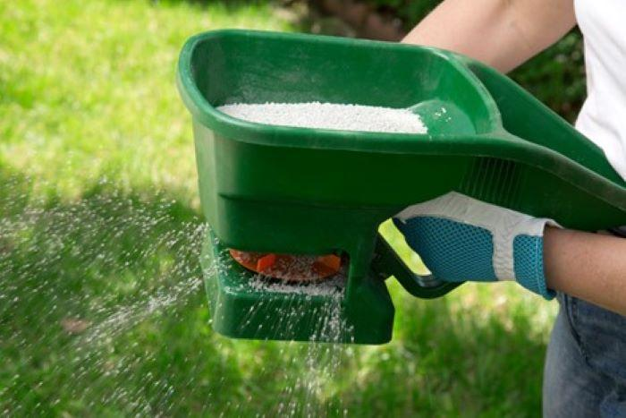 organic lawn care fertilizer