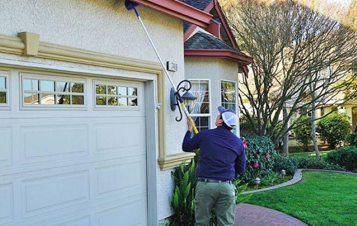 pest control expert san francisco bay area
