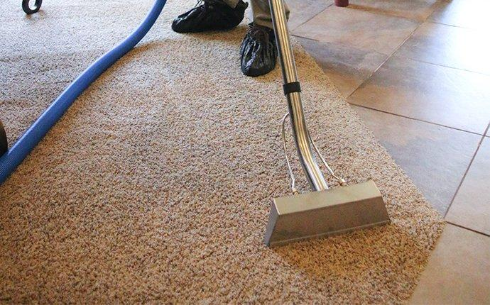 tech cleaning a carpet