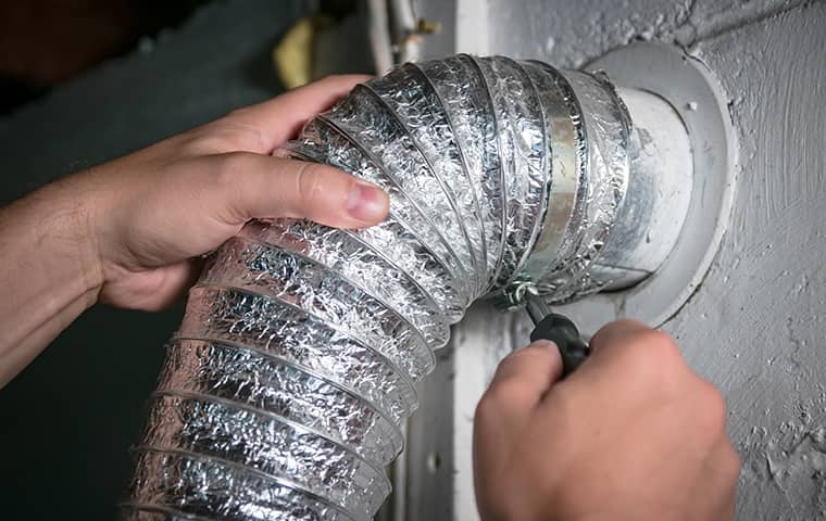 augustine exterminators air duct cleaning service in kansas city