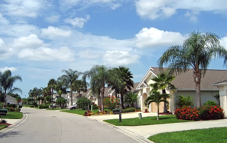 street view of homes in a homeowner association