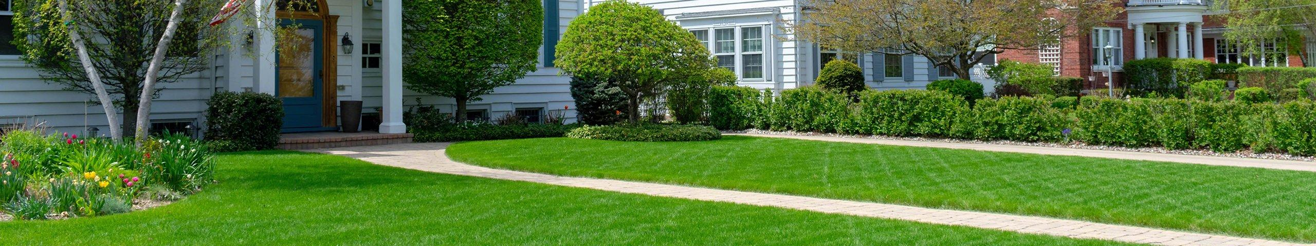 a nice green lawn outside homes in jacksonville florida